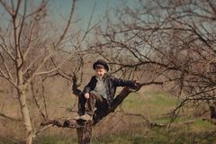 Boy sitting on a tree Royalty Free Stock Photos