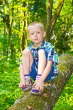 Boy sitting by a tree Stock Image