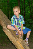 Boy sitting by a tree Royalty Free Stock Photography
