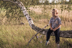 Boy sitting on a tree in the woods Stock Images