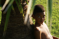 Boy sitting under palm. Royalty Free Stock Image