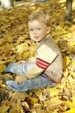 Boy sitting on yellow leaves Stock Images