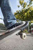 A boy with skateboard Stock Image