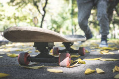 Boy with skateboard. In the park. Autumn leaves Stock Photo
