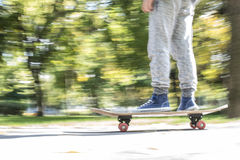 Boy with skateboard. In the park. Autumn leaves Royalty Free Stock Images