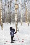 Boy on skis looking at nesting box Stock Photo