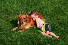 Boy Sleeping on Dog. Boy asleep on dog outside in grass Stock Photography