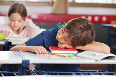 Boy Sleeping While Girl Studying In Background Royalty Free Stock Photos