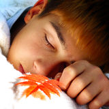 Boy sleeping outdoor Stock Photos