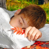 Boy sleeping outdoor Royalty Free Stock Photography