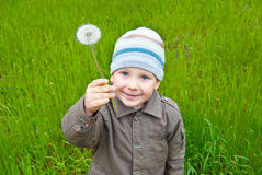 The boy with a small dandelion on a green lawn Stock Image