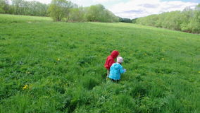 Boy and small girl  on meadow Royalty Free Stock Images