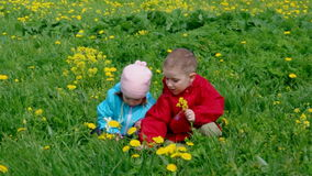 Boy and small girl  on meadow Stock Photography