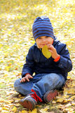 Boy smelling the autumn leaf Royalty Free Stock Photography