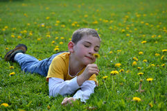 Boy Smelling Dandelion Stock Photos