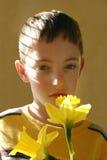 Boy smelling flower. 7 year old boy smelling daffodil flower Stock Image