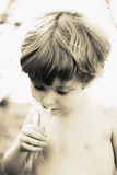 Boy smelling flowers Royalty Free Stock Photo