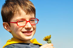 Boy smelling flowers Stock Photo