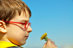 Boy smelling flowers Stock Photos