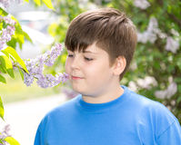Boy smelling a lilac flowers in park Royalty Free Stock Images