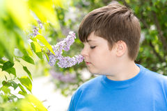 Boy smelling a lilac flowers in park Stock Photos