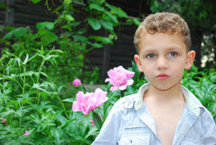Boy smelling a peony. stock images