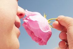 Boy smelling pink rose Royalty Free Stock Images