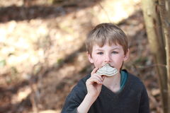 Boy smelling a scaly polypore Royalty Free Stock Photography