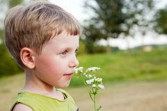 Boy smelling wild flowers Royalty Free Stock Photos