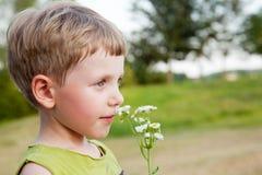 Free Boy Smelling Wild Flowers Royalty Free Stock Photos - 18706368