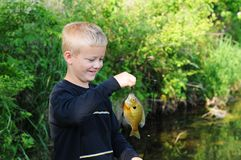 Boy Smiles Fishing. Young Boy Smiles Wide after Catching Fish Royalty Free Stock Photography