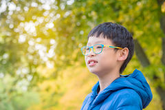 Boy smiles with yellow leave in background Royalty Free Stock Photos