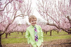 Boy smiling standing in flowering trees Stock Photo