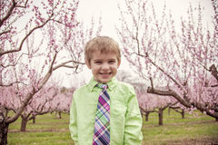 Boy smiling standing in flowering trees Royalty Free Stock Photography