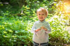 Happy smiling cute boy in forest stock images