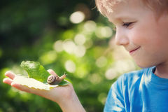 Boy and snail. Cute boy watching snail with a smile Royalty Free Stock Photos