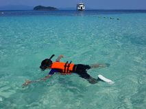 A boy snorkeling near the speed boat stock image