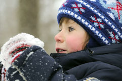 Boy in the snow. Boy playing in the winter snows royalty free stock photo