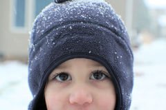 Boy on snowy day Royalty Free Stock Image