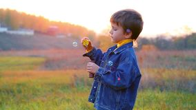 Boy with soap bubbles stock video footage