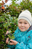 Boy with a sprig of Aronia Royalty Free Stock Image