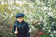 Boy on a walk in the garden in the spring stock image