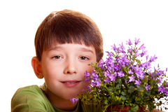 Boy with spring flowers. In flowerpot isolated on white Royalty Free Stock Images