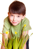 Boy with spring flowers. In flowerpot isolated on white Stock Photography