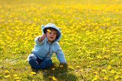 Boy in spring flowers field Stock Photo