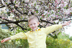 Boy at spring time Royalty Free Stock Photo