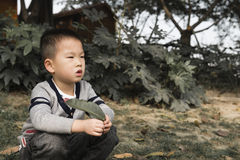 Boy squat. Chinese boy squat on lawn with one leaf in hand Stock Photo