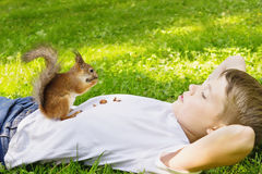 Boy and a squirrel Royalty Free Stock Image
