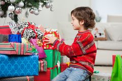 Boy Stacking Christmas Presents Royalty Free Stock Image
