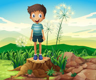 A boy standing above a stump Stock Photography
